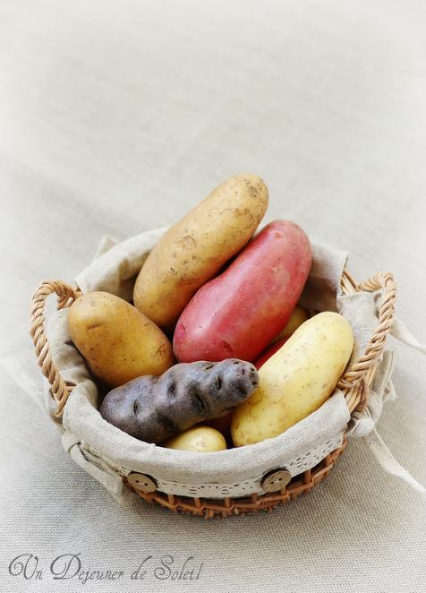 pommes de terre varietes usages cuisson conservation histoire