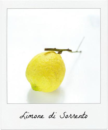 Les magnifiques limone di Sorrento et Costa d'Amalfi