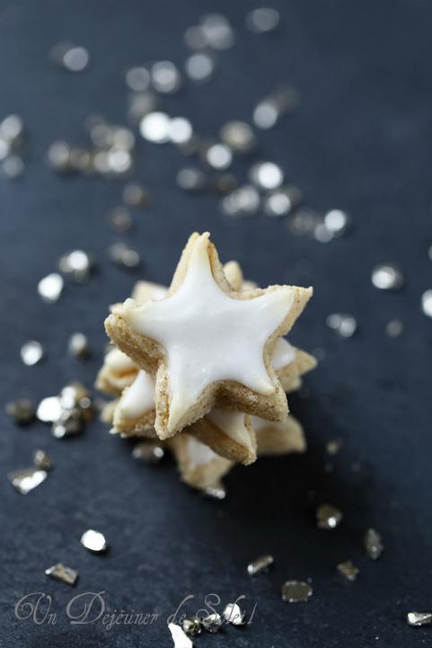 Étoiles à la cannelle (zimsterne)