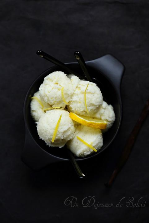 Sorbet citron, yaourt et vanille