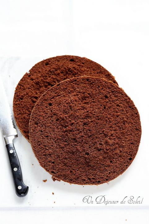 Génoise au cacao pour gâteaux, entremets... (recette et astuces)