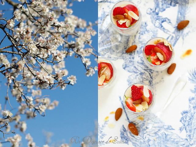 Fleurs d'amandier et blanc-manger aux amandes pêches et framboises
