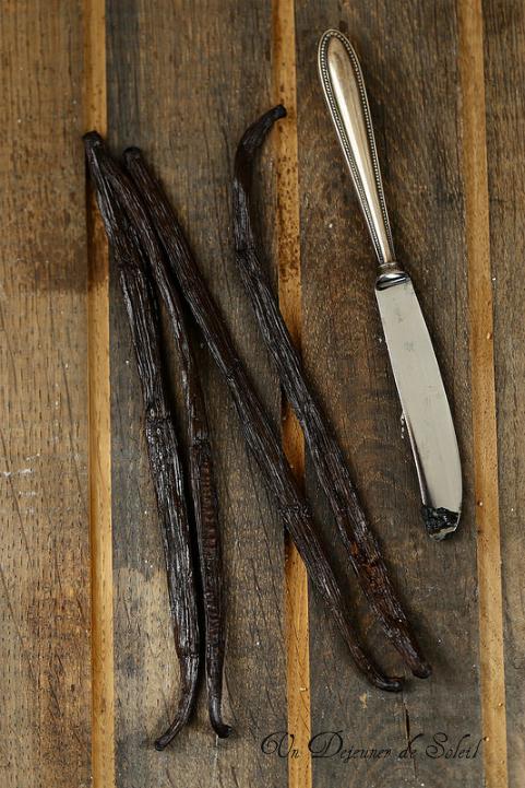 Tout savoir sur la vanille : origines, comme la choisir, la cuisiner, la conserver...