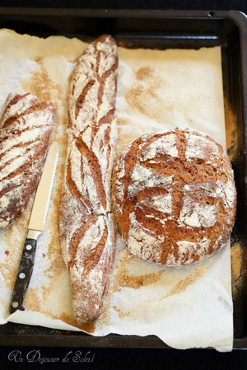 Recette pain complet au seigle typique italien