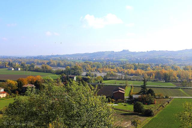 Comment est fabriqué le Parmigiano Reggiano ? Terroir, savoir-faire et excellence