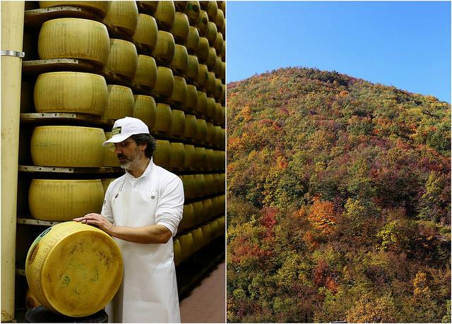 Tout savoir sur le parmesan. Affinage et paysage
