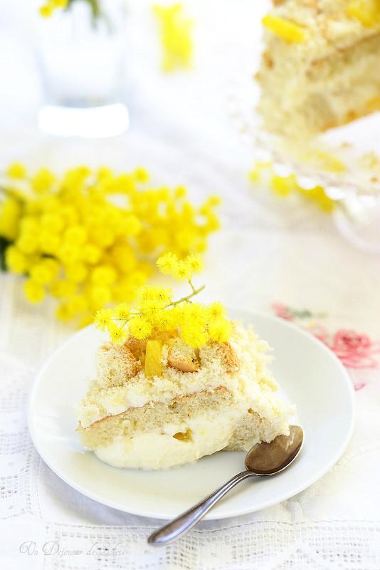 Torta Mimosa, gâteau entremets italien